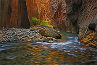 Image of Narrows Glow by Robert Lefkow